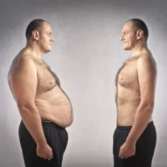 how-to-lose-belly-fat-as-fast-as-humanly-possible